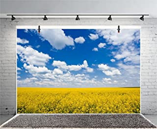 Leyiyi 8x6ft Photography Background Rape Flower Blossom Backdrop Wedding Party Sunny Spring Sky Cloud Rapeseed Canola Field Agriculture Happy Birthday Baby Shower Photo Portrait Vinyl Studio Video