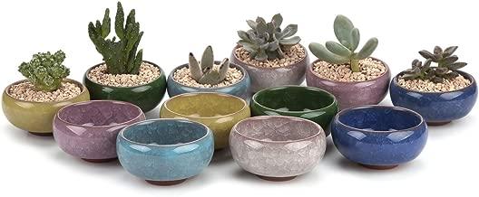 T4U 2.5 Inch Ceramic Ice Crack Zisha Serial Succulent Plant Pot Cactus Plant Pot Flower Pot Container Planter Full Colors Package 1 Pack of 12