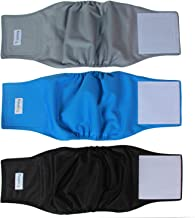Best velcro dog diapers Reviews