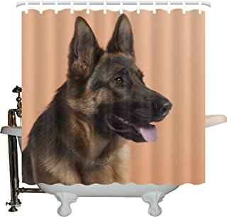 JXHLMS German Shepherd Shower Curtain, Close-up Photo of a Young Dog in Front of Orange Backdrop, Cloth Fabric Bathroom Decor Set with Hooks, 66 INCHES Wide x 72 INCHES Long