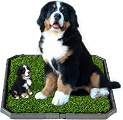 HUILE Artificial Grass Bathroom Mat for Dog Puppies Grass Rug for Dogs Potty Training Door Mat Indoor Outdoor Training Toilet Pad with Grass