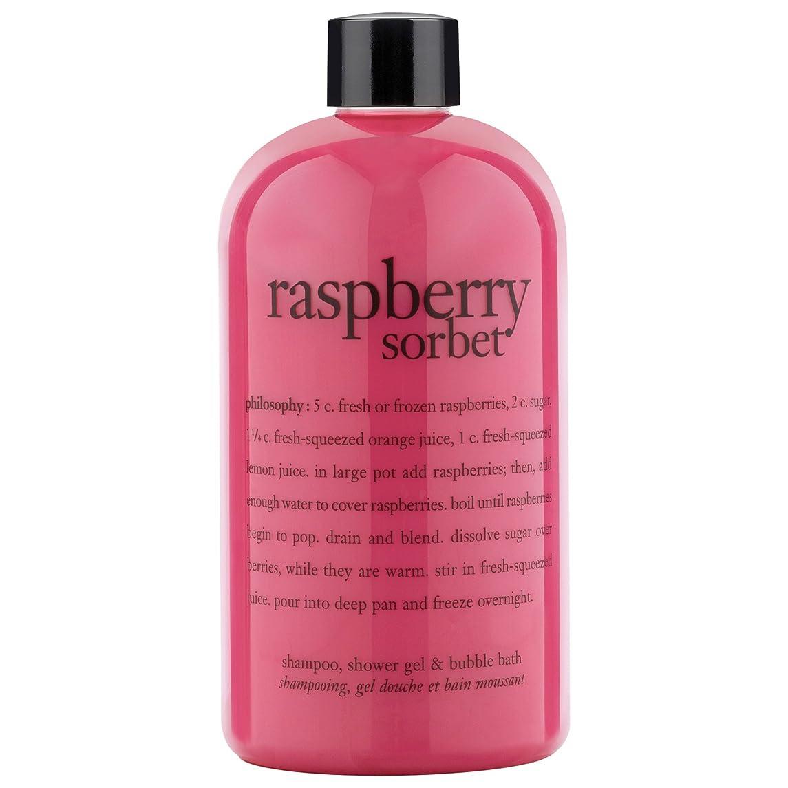 セーブ帳面フィード哲学ラズベリーシャワージェル480ミリリットル (Philosophy) - Philosophy Raspberry Shower Gel 480ml [並行輸入品]