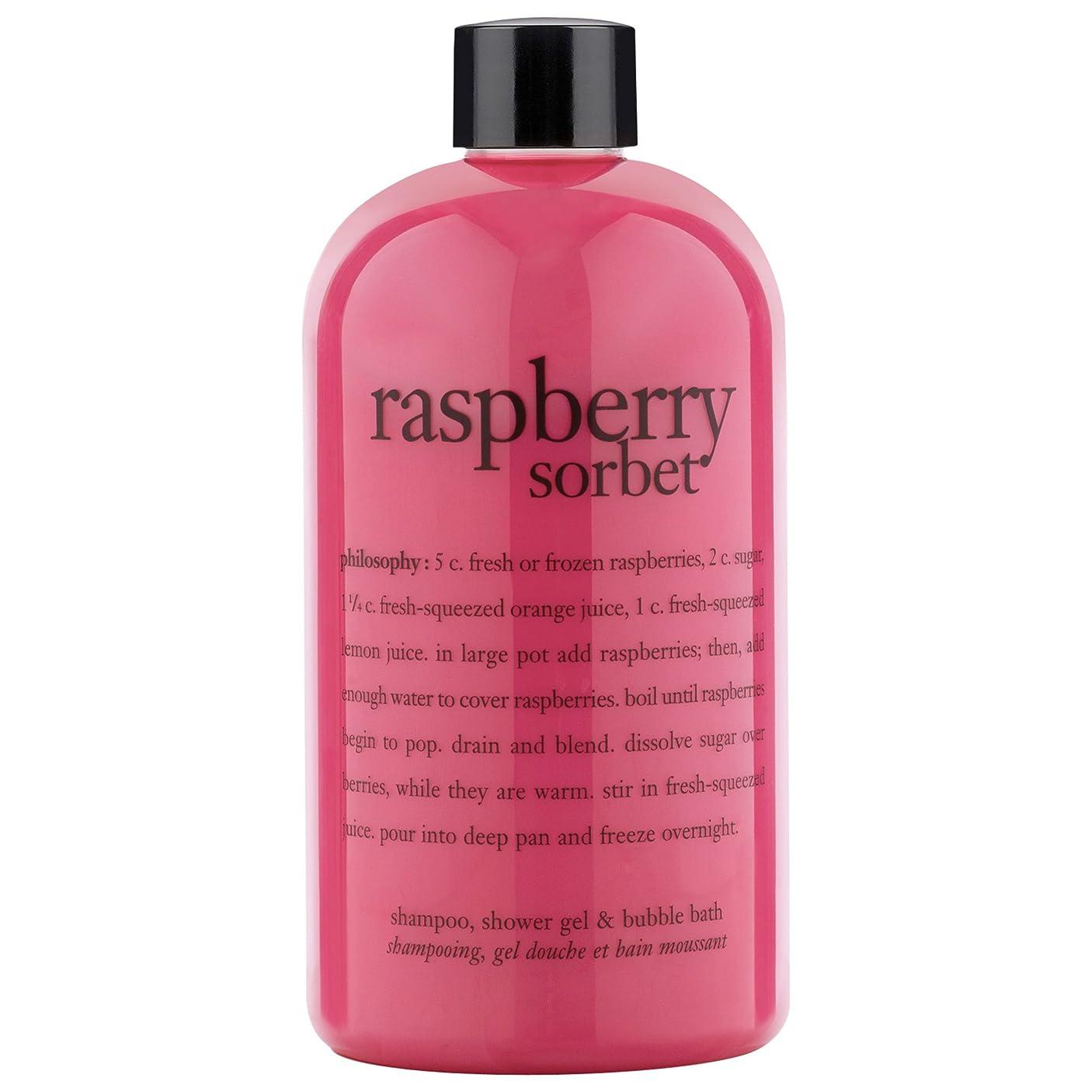 言い聞かせる師匠債権者哲学ラズベリーシャワージェル480ミリリットル (Philosophy) (x6) - Philosophy Raspberry Shower Gel 480ml (Pack of 6) [並行輸入品]