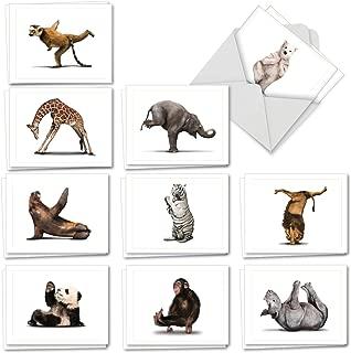 animal print envelopes