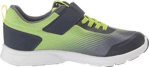Green/Gray
