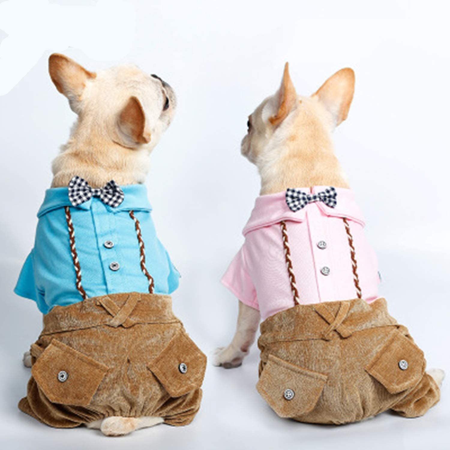 Dog Gentleman FourLegged Clothes Puppy Dog Clothes VIP Teddy Autumn and Winter Keep Warm Pet Clothing 2 Pcs
