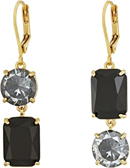 Shine On Drop Earrings