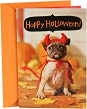 Hallmark Halloween Card with Sound for Kids (Dog in Costume, Plays