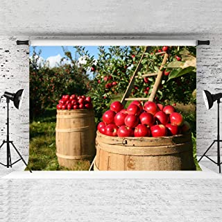 STS 9X6FT Ripe Red Apple Backdrop Autumn Orchard Ladder Retro Wooden Barrel Photography Background Children Baby Kids Photo Shoot WQST130