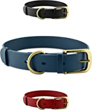 Best no chew dog collars Reviews