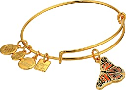 Charity By Design Monarch Butterfly Bangle