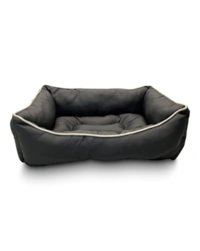 Swell Couch Beds Amazon Com Caraccident5 Cool Chair Designs And Ideas Caraccident5Info