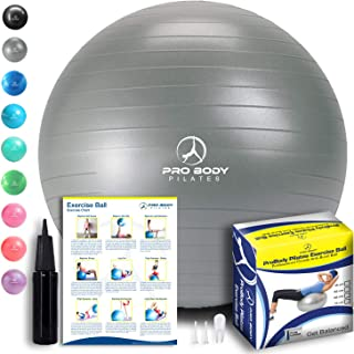 body fit ball sports authority