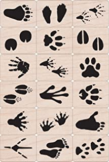 Hero Arts Ink N Stamp Animal Prints Set and ink cube, 1 x 1 Inch, Set of 18