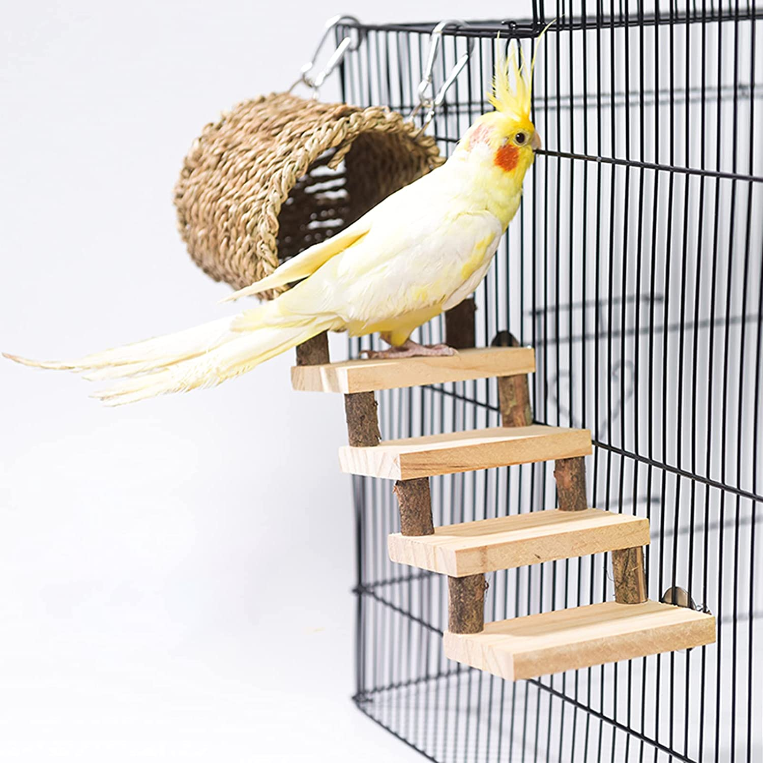 QBLEEV Super special price Bird Nest Washington Mall with Climbing Ladder T Perches Swing Cage