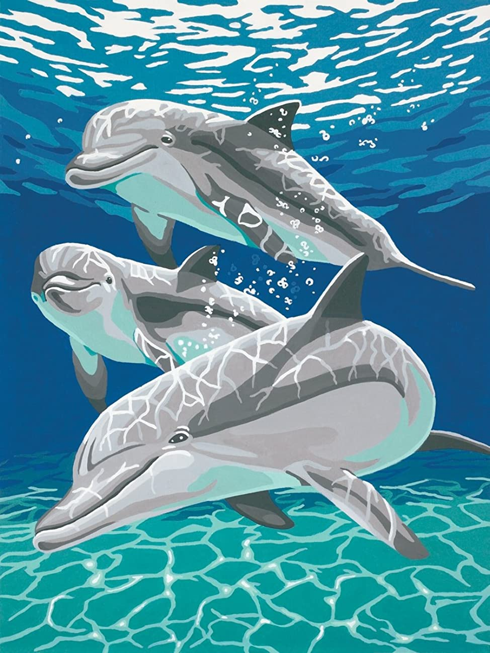 Dimensions Sunlit Dolphin Pals Paint by Number for Adults, 9'' W x 12'' L