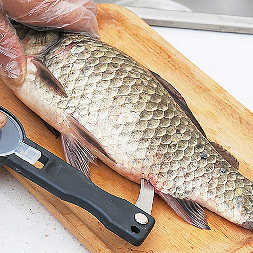 Rabot en /écailles de poisson en acier inoxydable-grattoir /à poisson-outil de retrait rapide des /écailles-outil de cuisine-peut vous aider /à retirer les /écailles plus facilement et plus rapidement