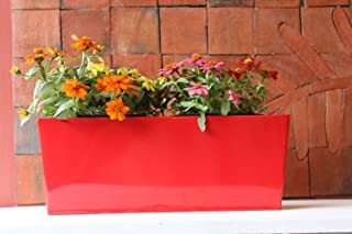 Green Gardenia Rectangular Table Top Box Planter Large Red Color