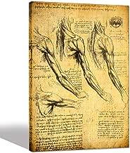 sechars - Anatomy Art Prints by Leonardo Da Vinci Giclee Canvas Print Vintage Wall Art Decor Famous Painting Reproduction Canvas Artwork Ready to Hang -24