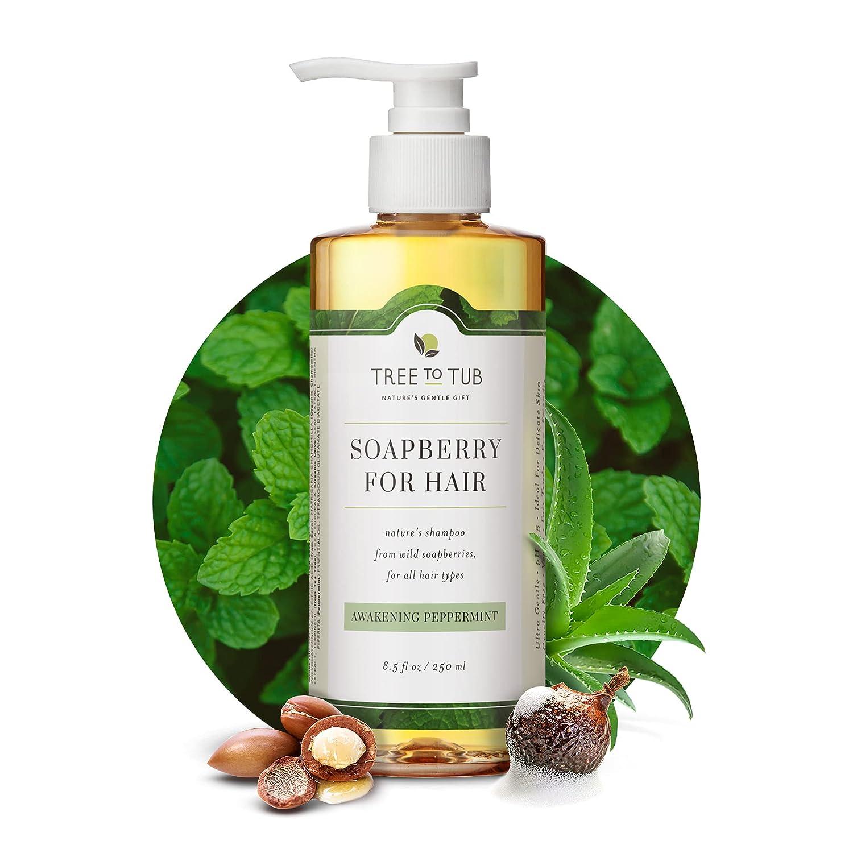 best ph balanced shampoo for oily hair