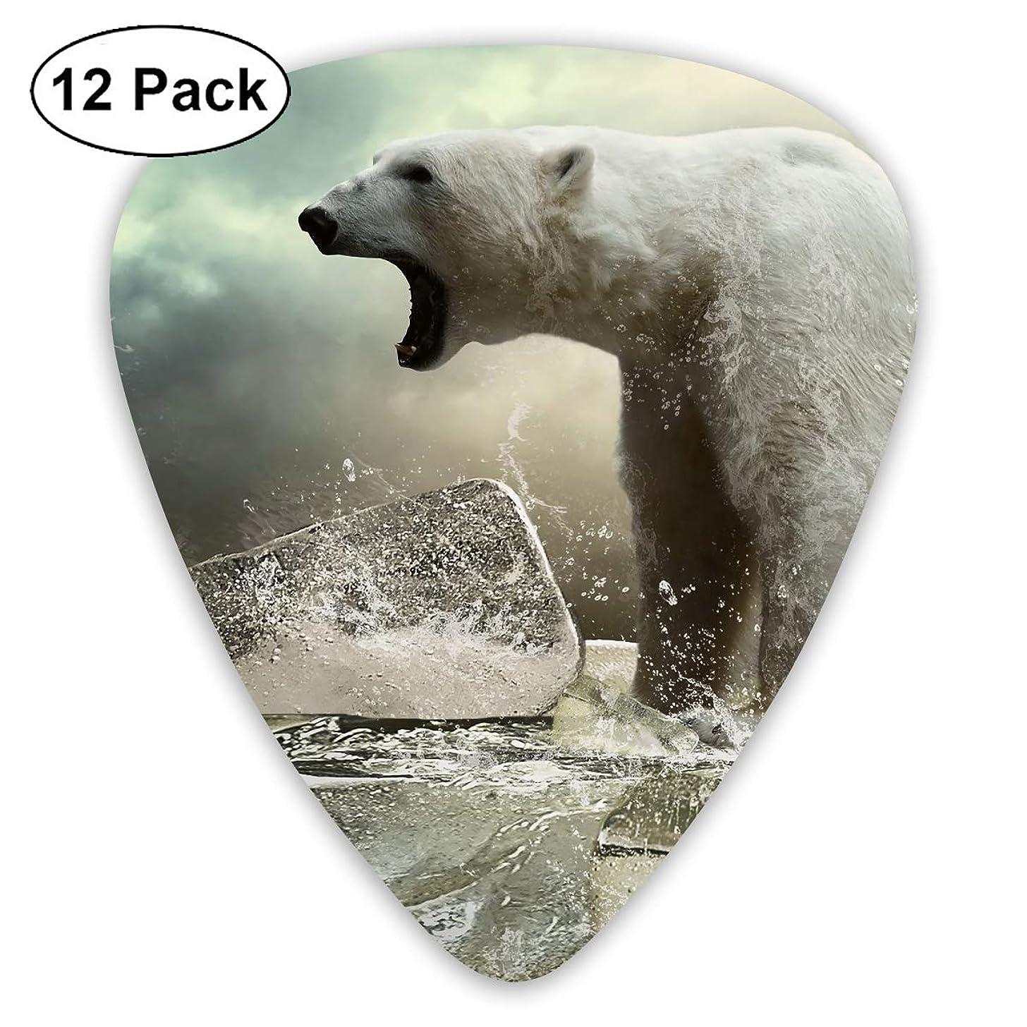 V5DGFJH.B Polar Bear On Ice Classic Guitar Pick Player's Pack for Electric Guitar,Acoustic Guitar,Mandolin,Guitar Bass