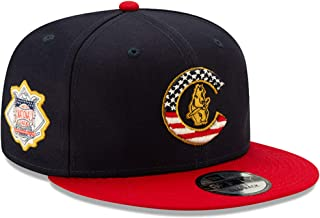 Best cubs 4th of july hat Reviews