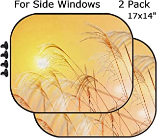 MSD Car Sun Shade - Side Window Sunshade Universal Fit 2 Pack - Block Sun Glare, UV and Heat for Baby and Pet - Image ID 24298454 White Reeds Field in The Sunset