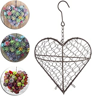 Metal Wall Hanging Plant Holder Heart Shape Succulent Flower Pot Decor Basket