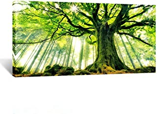 Kreative Arts Canvas Large Art Print Spring Forest Nature Green Big Tree Wall Art Photo Printed on Canvas Framed Artwork f...