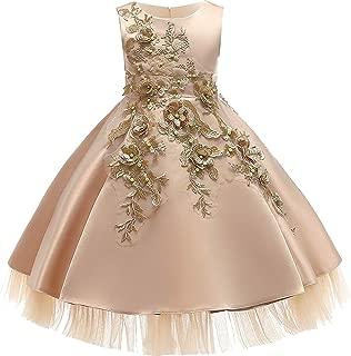 Baby Girls Infant Embroidery Dress Kids Gold Wedding Toddler High-End Dress Flower Tutu Formal Party Dress Girls,D0952-Champagne,5