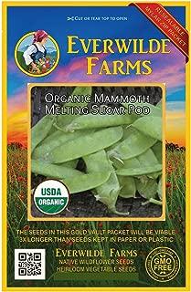 Everwilde Farms - 75 organic Mammoth Melting Sugar Pea Seeds - Gold Vault Packet