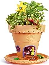 Fairy Garden- Jardín Lily (CEFA Toys 04614)