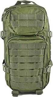 EE.UU. Mochilla Assault Pack (Small/