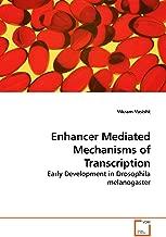 Enhancer Mediated Mechanisms of Transcription: Early Development in Drosophila melanogaster
