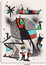 Berkin Arts Joan Miro Stretched Giclee Print On Canvas-Famous Paintings Fine Art Poster Reproduction Wall Decor-Ready to Hang(Peasant to The Birds)#NK