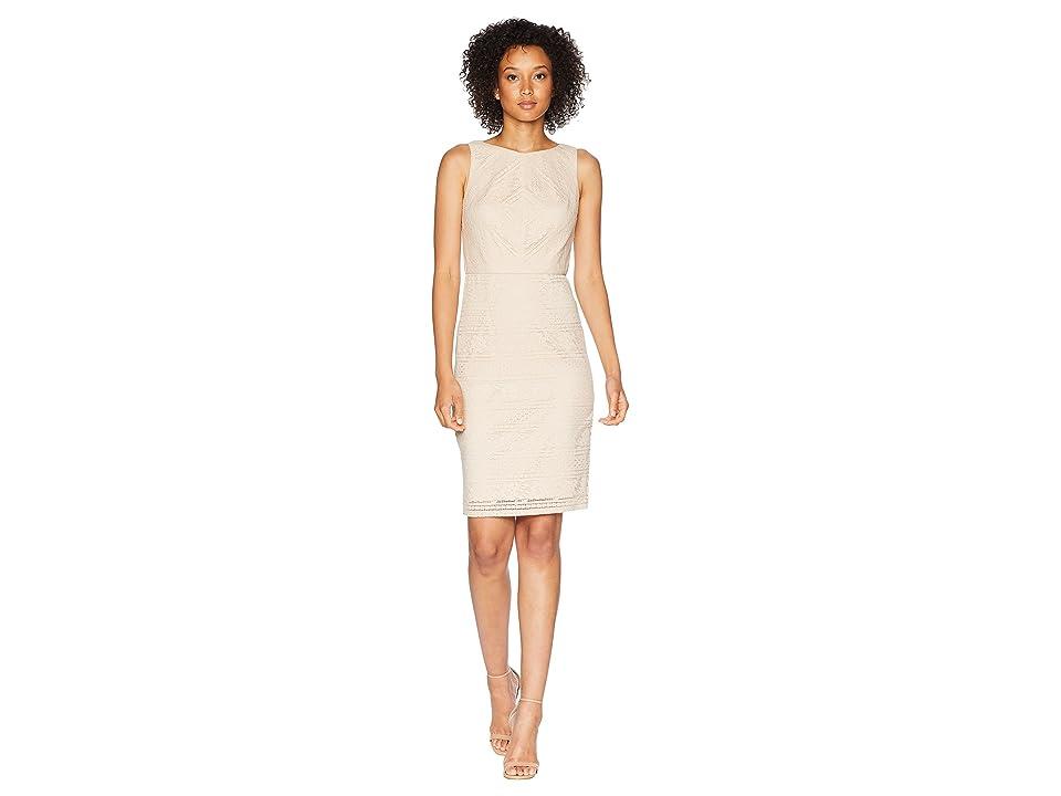 Adrianna Papell Vintage Stripe Lace Sheath Dress (Natural) Women