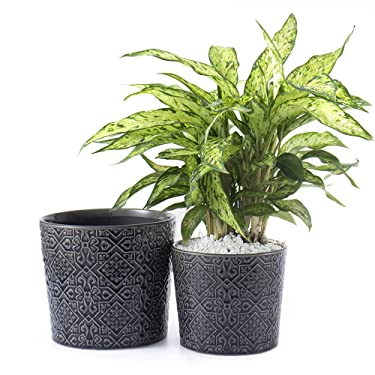 """Voeveca Ceramic Flower Pot Garden Planters 6.5"""" and 5.5"""" Set of 2 Indoor Outdoor, Modern Nordic Style Plant Containers (Black&Gray)"""