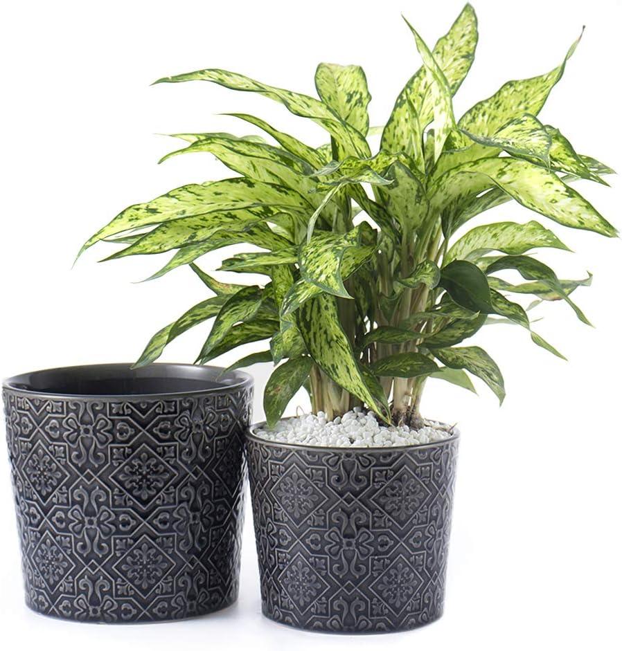 Voeveca Ceramic Flower Pot Garden Planters Set of Gorgeous Limited time cheap sale 5.5