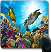 Cartoon Clown Fish Salt Water Ocean Scene Computer Mouse Pad
