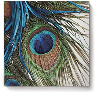 Best peacock feather wall decor Reviews