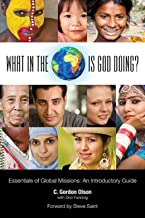 What in the World is God Doing?:: An Introduction to World Missions
