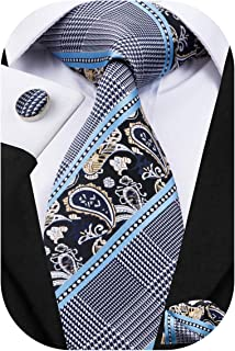 Mens Paisely Silk Tie and Pocket Square Set
