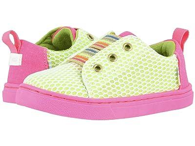 TOMS Kids Lenny Elastic (Toddler/Little Kid) (Neon Green Vivid Canvas) Girl
