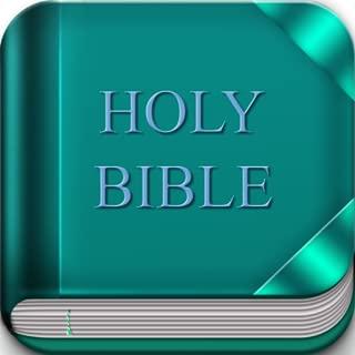 NWT Bible