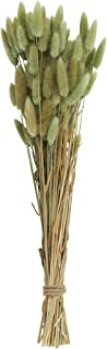 Creative Co-op Bunny Tail Grass Bouquet, Green