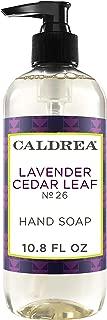 Caldrea Lavender Cedar Leaf Hand Soap 10.8 oz