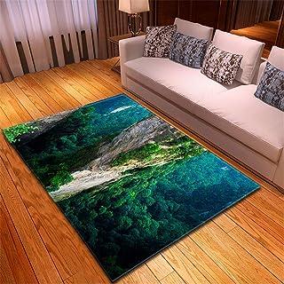 ラグ 低反発 ラグ正方形ラグ 1.5 畳 99X150CM 崖のリビングルームのカーペットの寝室のダイニングルームのマットリビングルームリビングルームポリエステル