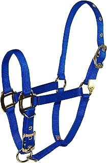 Hamilton 8DA SMBL 3/4-Inch Nylon Adjustable Arabian Horse Halter for 500 to 800-Pound Horse, Blue