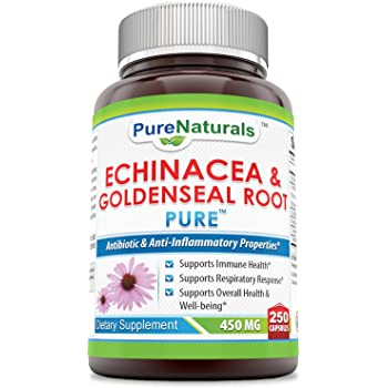 Pure Naturals Echinacea & Goldenseal Root 450 Mg Capsules- Supports Immune Health* Supports Respiratory Response* Supports Overall Health & Well-Being*
