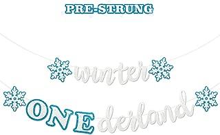 Faisichocalato Winter Onederland Banner, Blue & White Snowflakes Garland Winter 1st Birthday Decor for Baby Girls Boys Winter Onederland Frozen Themed Snow Princess First Birthday Party Decorations